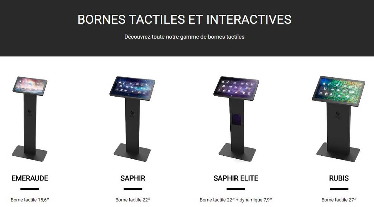 Borne tactile interactive