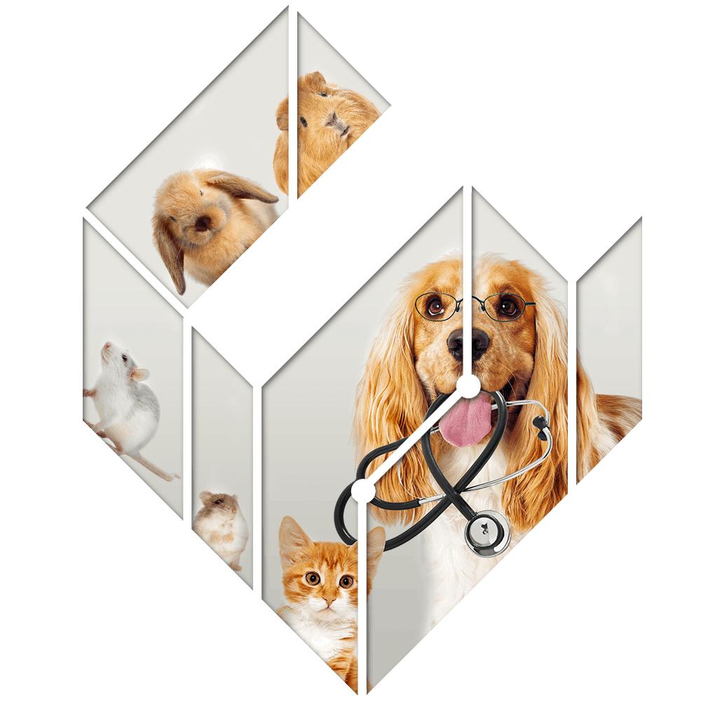 éditions spéciales vétérinaire numérique funnyvet